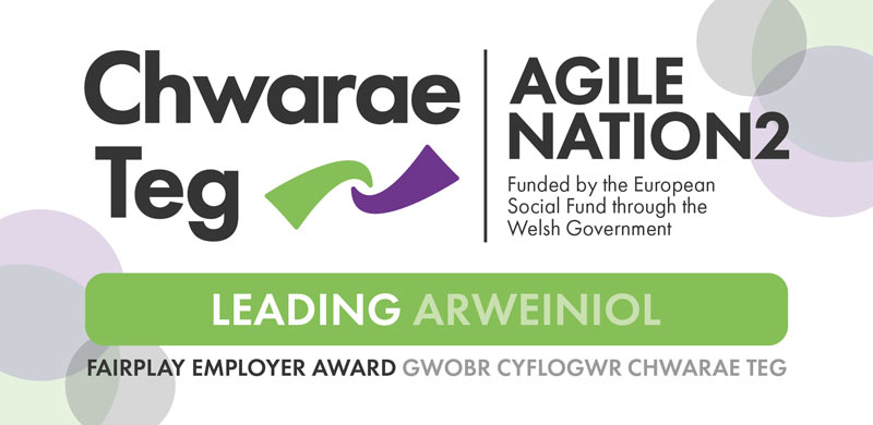 Chwarae Teg Fairplay Employer Award